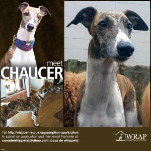 070516 Chaucer